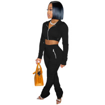 Solid Color Black Zipper Velvet Hoodie Sweatpant Two Piece Winter Filed Sleeves Piled Pants Set