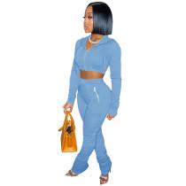 Solid Color Light Blue Zipper Velvet Hoodie Sweatpant Two Piece Winter Filed Sleeves Piled Pants Set