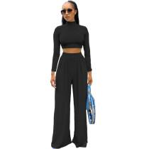 Solid Color Black Long Sleeve High Collar Crop Top Wide Leg Pants Set