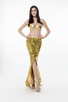 Bright Mermaid Costume HS78298