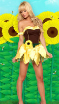 Wholesale Halloween Costumes Fruit Costumes HS0074