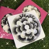 7 pairs flowers books