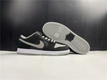 Nike Dunk SB Low Shadow Shoes