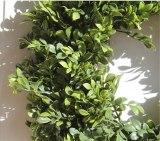 Artifical Plants Garland Greenery Fake Plants Wreath Boxwood Gralands Wreath Wedding Decoration Farmhouse Hawaii Door Decor