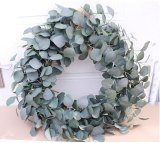 Wreath Eucalyptus Leaf Wall Decoration Door Hanging Decoration Round Lintel Living Room Decoration Artifical Plants Garland