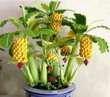 100PCS Mini Banana Bonsai Fruit Seeds