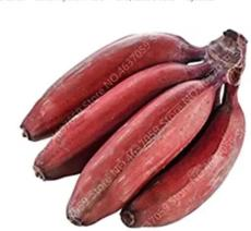 100PCS Dwarf Banana Tree Seeds - Red Skin