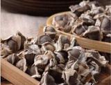 100PCS Fresh Edible Moringa Semillas Seeds