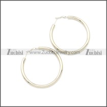 Stainless Steel Earring e002136S2