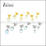 Stainless Steel Earring e002171G1