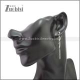 Stainless Steel Earring e002190S