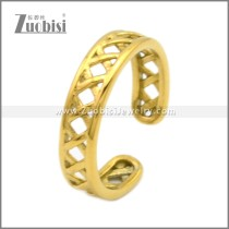 Stainless Steel Ring r008994G