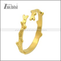 Stainless Steel Ring r008979G