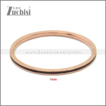 Stainless Steel Ring r009018R1