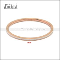 Stainless Steel Ring r009018R3