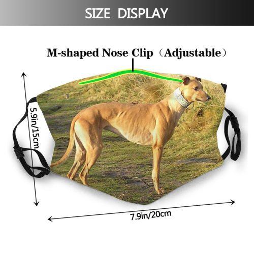 yanfind Whippet Dog Vertebrate Hortaya Borzaya Carnivore Greyhound Greyhounds Canidae Sighthound Greyhound Dog Dust Washable Reusable Filter and Reusable Mouth Warm Windproof Cotton Face