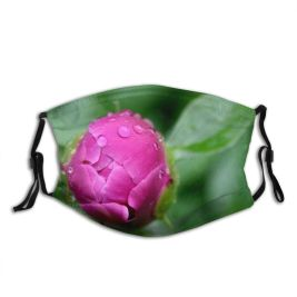yanfind Plant Flower Crisp Flower Closeup Drip Plant Bud Foreground Drop Sharp Botany Dust Washable Reusable Filter and Reusable Mouth Warm Windproof Cotton Face