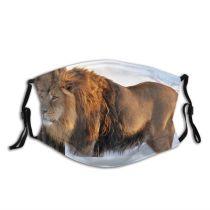 yanfind Winter Felidae Big Leo Mane Carnivore Masai Fur Lion Vertebrate Beast Cats Dust Washable Reusable Filter and Reusable Mouth Warm Windproof Cotton Face