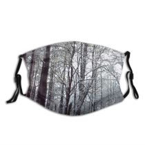 yanfind Winter Natural Winter Growth Woody Landscape Branch Forest Hardwood Northern Tree Forest Dust Washable Reusable Filter and Reusable Mouth Warm Windproof Cotton Face