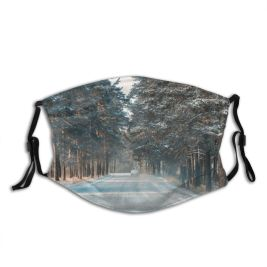 yanfind Communication Frozen Tree Snow City Treelined Way Diminishing Perspective Forward Road Kazakhstan Dust Washable Reusable Filter and Reusable Mouth Warm Windproof Cotton Face