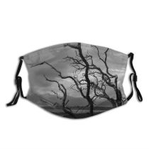 yanfind Winter Leaves Cloud Landscape Sky Trees Tree Branch Atmospheric Spring Dust Washable Reusable Filter and Reusable Mouth Warm Windproof Cotton Face
