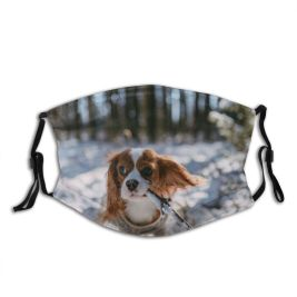yanfind Charles Playing Estonia Moving Royal Spaniel King Snow Thoroughbred Cavalry Sky Below Dust Washable Reusable Filter and Reusable Mouth Warm Windproof Cotton Face