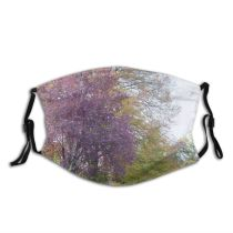 yanfind Colours Landscape Bench Trees Leaf Plant Spring Tree Plant Botany Grass Natural Dust Washable Reusable Filter and Reusable Mouth Warm Windproof Cotton Face