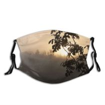 yanfind Foggy Morning Dawn Haze Tree Tree Fog Misty Silhouette Fog Sunrise Sky Dust Washable Reusable Filter and Reusable Mouth Warm Windproof Cotton Face