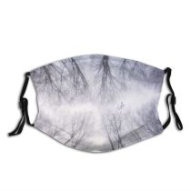 yanfind Ice Igniting Fantasy Frost Landscape Frozen Tranquility Tree Snow Wind Branch Forest Dust Washable Reusable Filter and Reusable Mouth Warm Windproof Cotton Face