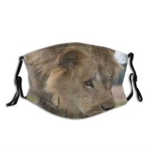 yanfind Winter Felidae Big Impressed King Masai D Lion Tragic Whiskers Vertebrate Cats Dust Washable Reusable Filter and Reusable Mouth Warm Windproof Cotton Face