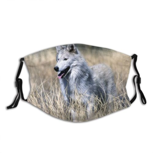 yanfind Wildlife Vertebrate Dog Czechoslovakian Carnivore Wolfdog Canidae Wolf Canis Saarloos Wolfdog Dust Washable Reusable Filter and Reusable Mouth Warm Windproof Cotton Face