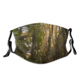 yanfind Idyllic Tropical Calm Unpaved Flora Jungle Sunbeams Forest Plants Rays Tranquil Scenery Dust Washable Reusable Filter and Reusable Mouth Warm Windproof Cotton Face