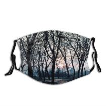 yanfind Winter Natural Winter Atmospheric Woody Snow Landscape Sky Branch Afternoon Milano Tree Dust Washable Reusable Filter and Reusable Mouth Warm Windproof Cotton Face