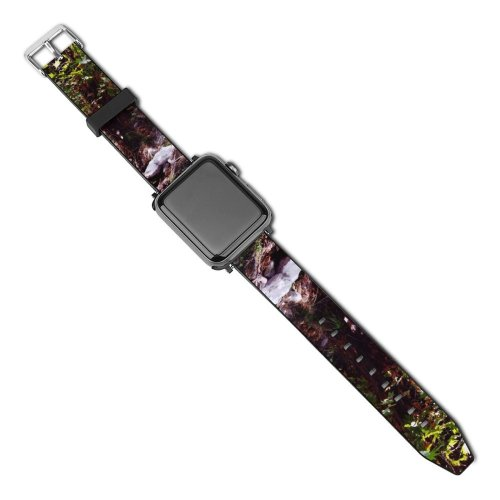 yanfind Watch Strap for Apple Watch Pond Woods Forest Lake Landscape Resources Tree Vegetation Watercourse Natural Compatible with iWatch Series 5 4 3 2 1