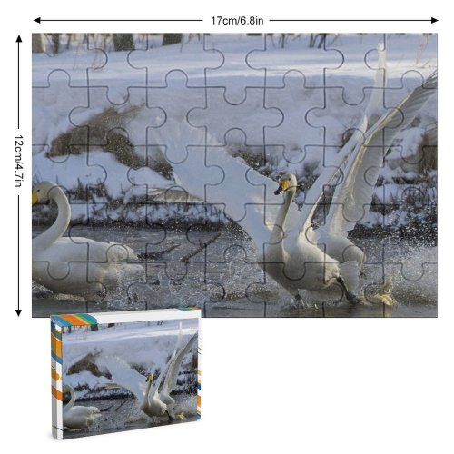 yanfind Picture Puzzle Whooper  Bird Fight Spring Lake Vertebrate Ducks Geese Swans Beak Tundra Family Game Intellectual Educational Game Jigsaw Puzzle Toy Set