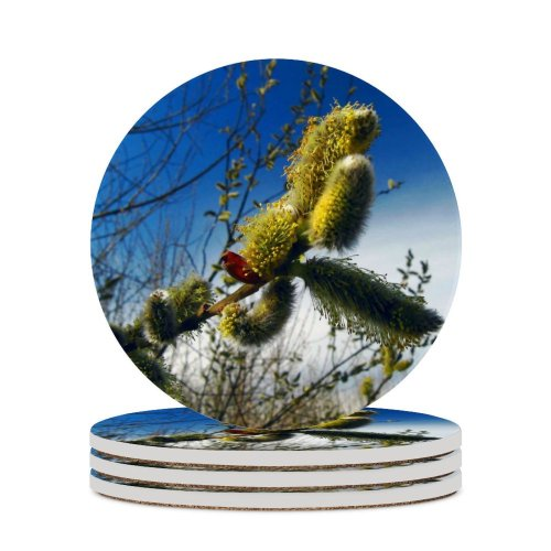 yanfind Ceramic Coasters (round) Spring Soft Natural Plant Bloom  Vegetable Petal Petals Twig Tree Fluffy Family Game Intellectual Educational Game Jigsaw Puzzle Toy Set