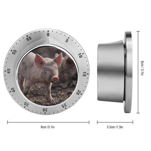 yanfind Timer Images Argentina Pig Azul De Aires Stock Free Buenos Pictures Boar Hog 60 Minutes Mechanical Visual Timer