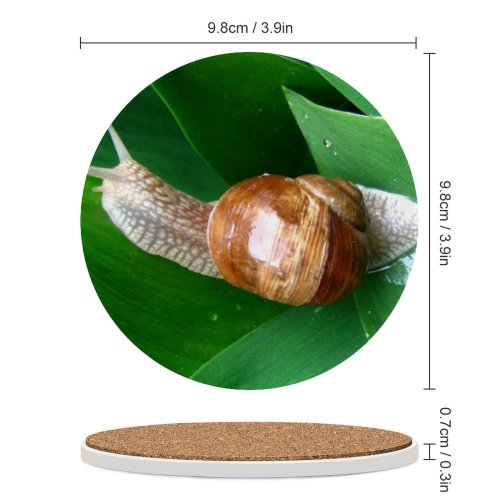 yanfind Ceramic Coasters (round) Snail Macro Leaf Spring Snails Slugs Slug Lymnaeidae Sea Molluscs Invertebrate Organism Family Game Intellectual Educational Game Jigsaw Puzzle Toy Set