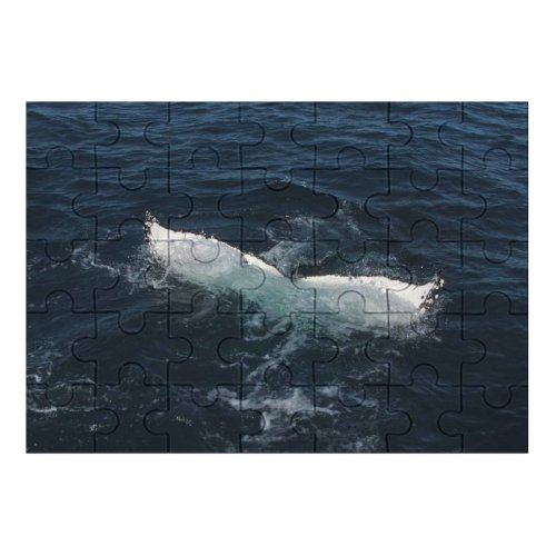 yanfind Picture Puzzle Whale Australie Walvis Sea  Oceaan Ocean Marine Biology Cetacea Wind Wave Family Game Intellectual Educational Game Jigsaw Puzzle Toy Set