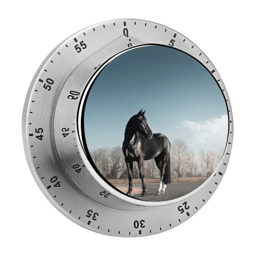 yanfind Timer Horse Race Clear Sky 60 Minutes Mechanical Visual Timer