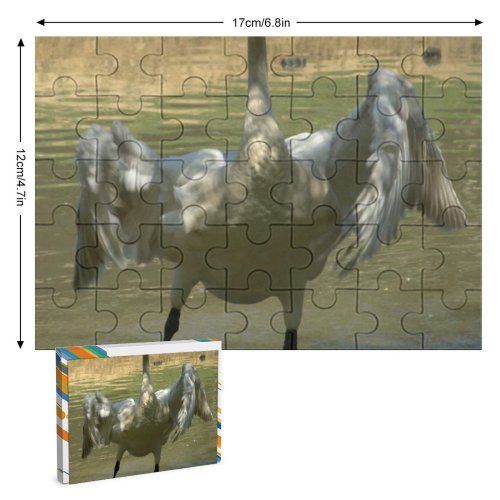 yanfind Picture Puzzle Whooper  Beak Kneck Feather Flap Wing Bill Wetland Bird Cob Wildfowl Family Game Intellectual Educational Game Jigsaw Puzzle Toy Set