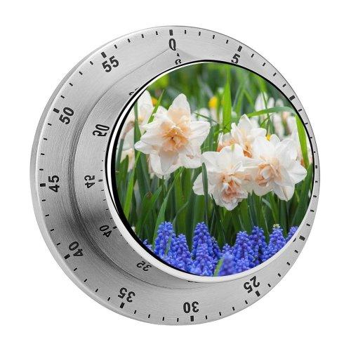yanfind Timer Images Aptekarskiy Flowers Plant Pictures Daffodil  Flower Garden Ogorod Spring Public 60 Minutes Mechanical Visual Timer