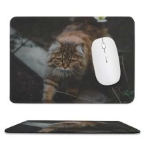 yanfind The Mouse Pad Blur Focus Whiskers Cat Pet Fur Outdoors Furry Adorable Cute Kitty Eyes Pattern Design Stitched Edges Suitable for home office game