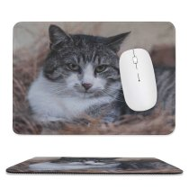 yanfind The Mouse Pad Abyssinian Free Hay Cat Stock Wallpapers Manx Images Pictures Pet Grey Pattern Design Stitched Edges Suitable for home office game