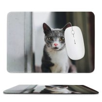 yanfind The Mouse Pad Blur Focus Whiskers Cats Cat Depth Face Field Pet Cat's Fur Furry Pattern Design Stitched Edges Suitable for home office game
