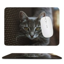 yanfind The Mouse Pad Abyssinian Kitten Cat Wallpapers Manx Creative Images Eye Pictures Face Tabby Pattern Design Stitched Edges Suitable for home office game