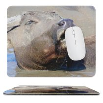 yanfind The Mouse Pad Wild Life Tiger Zebra Safari Vertebrate Snout Terrestrial Nose Wildlife Mouth Working Pattern Design Stitched Edges Suitable for home office game