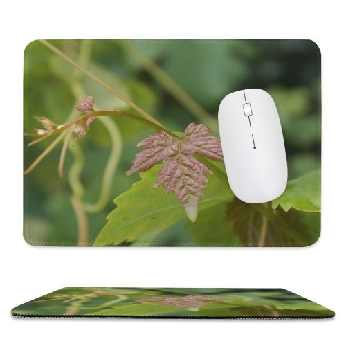 yanfind The Mouse Pad Vine Leaf Grape Grapes Leaves Wine Flower Plant Flowering Botany Nettle Family Pattern Design Stitched Edges Suitable for home office game