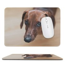 yanfind The Mouse Pad Dog Pet Wallpapers Free Pictures Wood Hound Grey Images Snout Beagle Pattern Design Stitched Edges Suitable for home office game