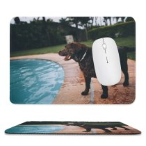 yanfind The Mouse Pad Dog Pool Pet Wallpapers Free Pictures Hound Images Pattern Design Stitched Edges Suitable for home office game